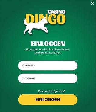 dingo casino login